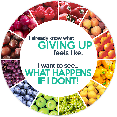 """The wheel of health and fitness with a quote of """"I know what giving up feels like, I want to see what happens if I don't!"""""""